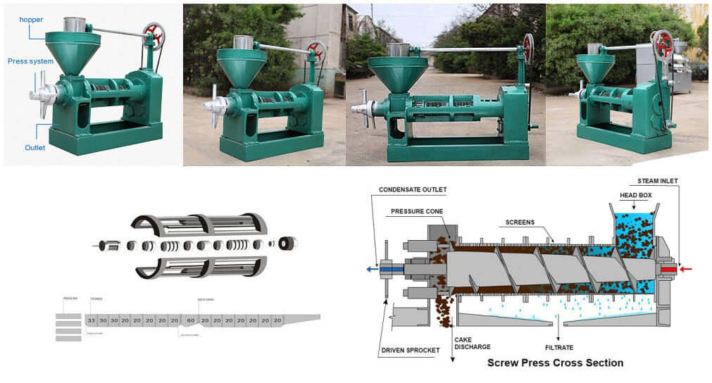 The introduction of sunflower screw oil press