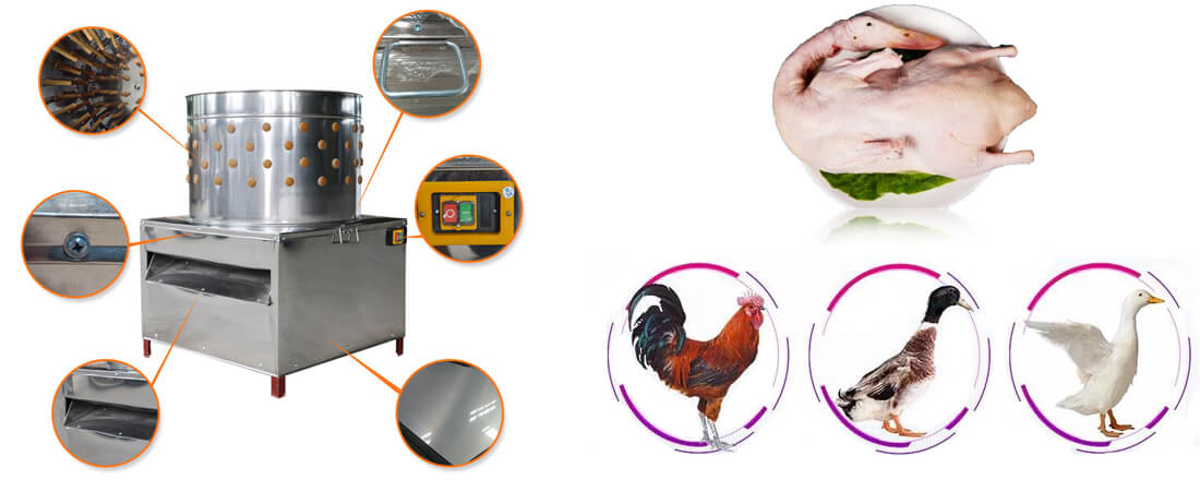 features and application of poultry feather removal machine