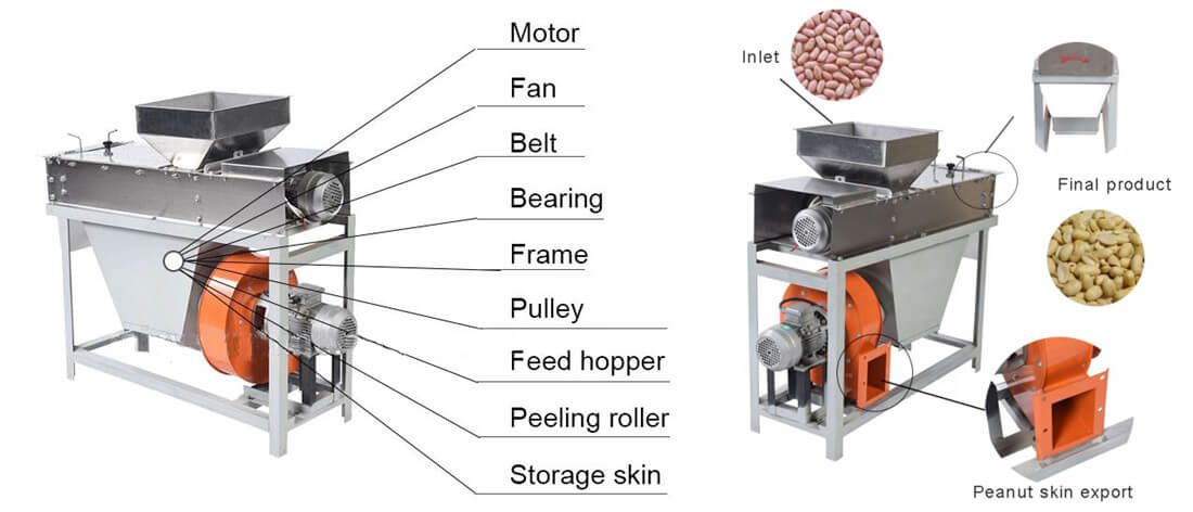 roasted peanut red skin removal machine structure and detailed feature